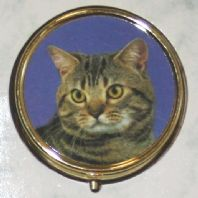 Tabby Cat Pill Box
